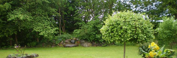 Grønne omgivelser